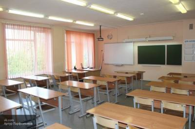 В Петербурге еще три класса отправили на удаленку из-за коронавируса