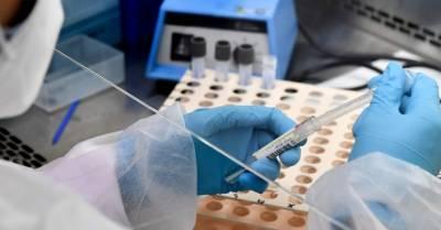 """""""Британский"""" штамм коронавируса впервые выявили в Аргентине"""