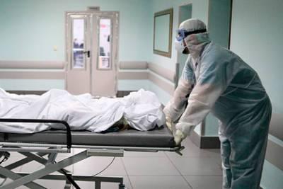 В России третий день подряд обновился рекорд по смертям пациентов с COVID-19