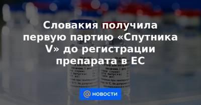 Словакия получила первую партию «Спутника V» до регистрации препарата в ЕС