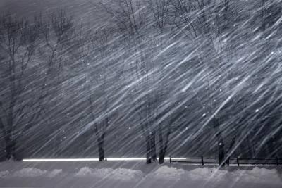 Погода в Ленобласти: снегопад и усиление ветра ожидаются с 4 по 6 марта