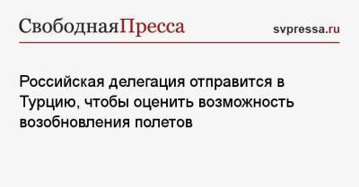Российская делегация отправится в Турцию, чтобы оценить возможность возобновления полетов