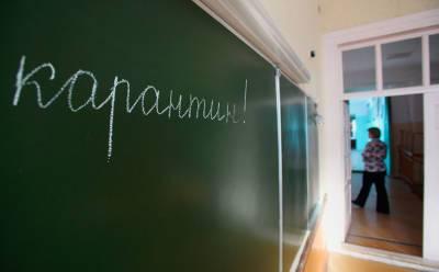 18 классов в новосибирских школах ушли на карантин из-за коронавируса